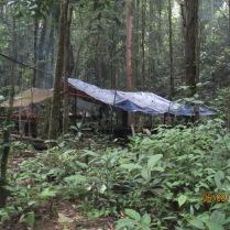 HOSCAP Borneo camp