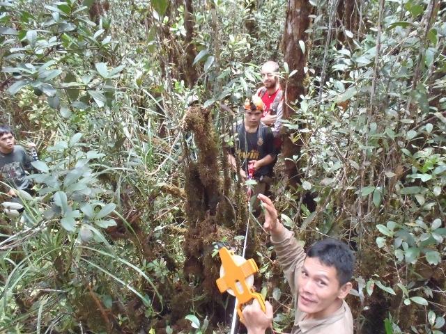 Habitat measurements