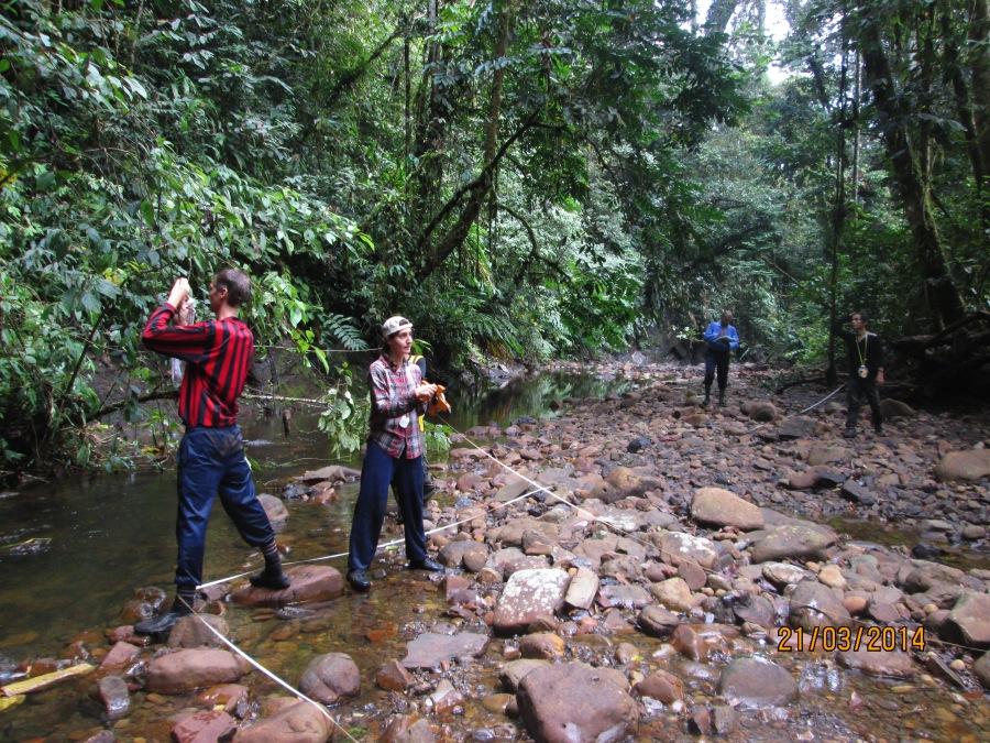 Habitat survey