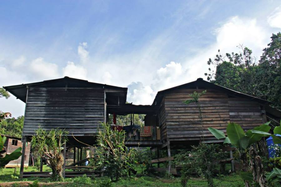 Lio Ayai's house at Long Kepang. Lio has been a field guide of HOSCAP Borneo since 2012