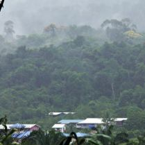The walk back to Long Lellang from Long Kepang and view of Long Lellang on a rainy, misty morning