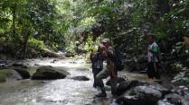 Azlan Mohamed and some local research assistants following a stream to get to a survey point