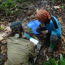 Jurgen Niedballa_ Len_how to fill out habitat data forms