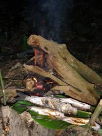 Cooking fish by the fire